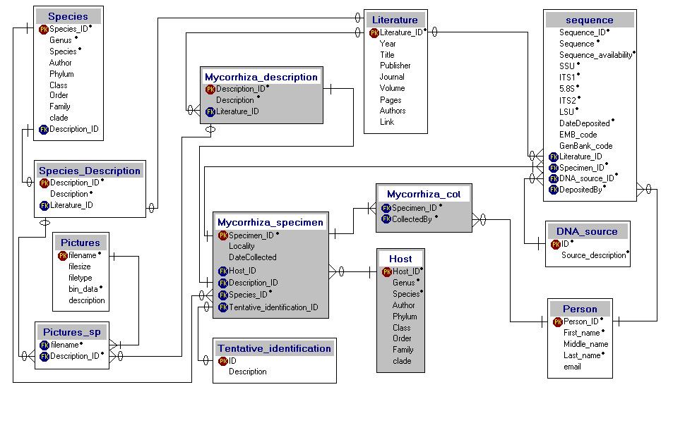 PlutoF tabelite struktuur aastast 2003